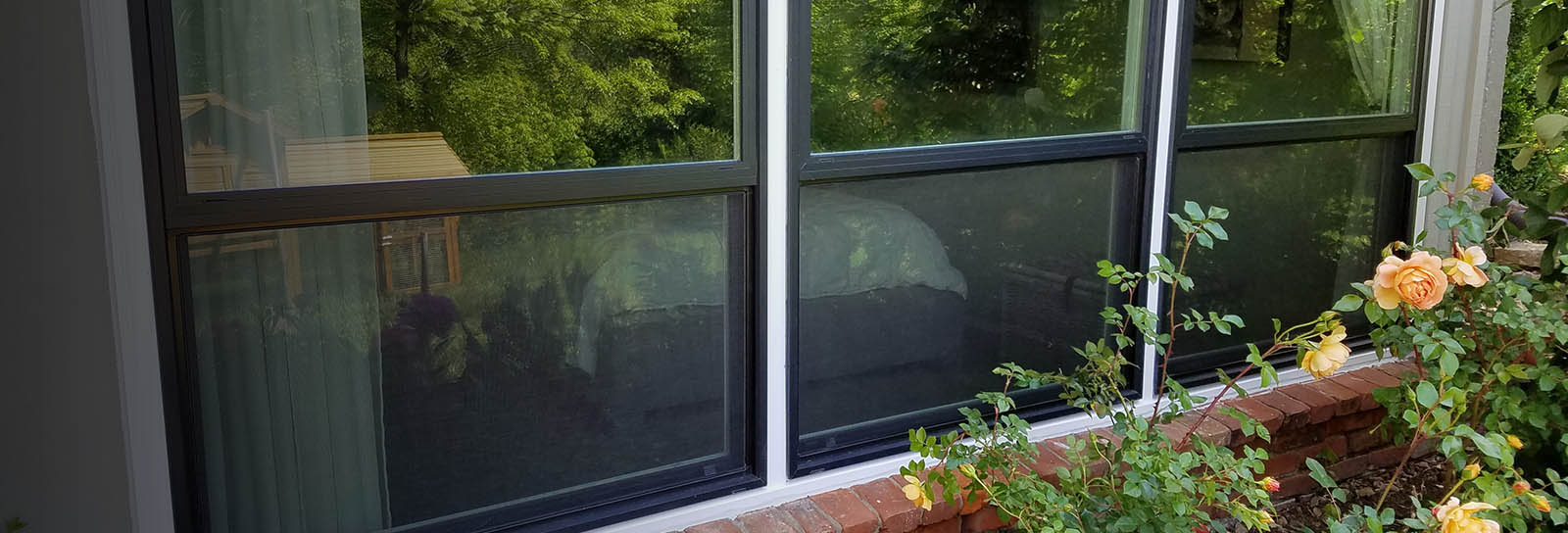 Window-Replacement-Near-Me